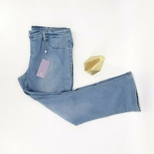 Hot in Hollywood Jeans Women 1X Blue Cotton Denim